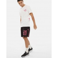 the-north-face-graphic-flow-shorts-black-mr-pink-the-north-face